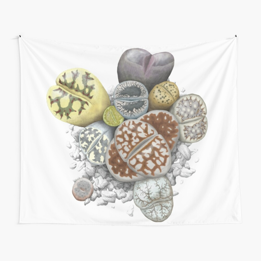 Lithops Cluster (No Labels) Wall Tapestry