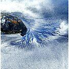 Der Ozean kommt ... von Angelika  Vogel