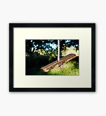 Vintage Rope Swing Framed Print