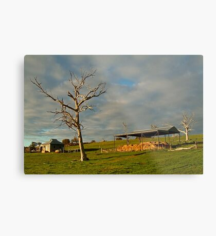 Rowsely Valley Farm Metal Print