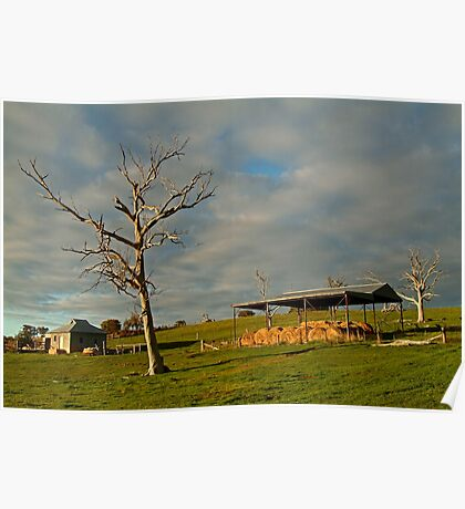 Rowsely Valley Farm Poster