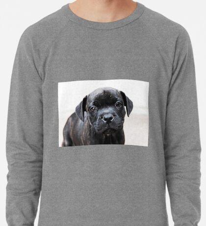 Milly Leichtes Sweatshirt