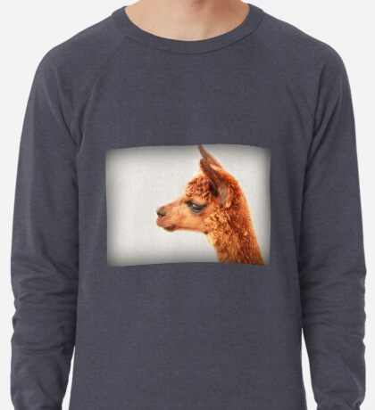 Ein Alpaka-Porträt Leichtes Sweatshirt