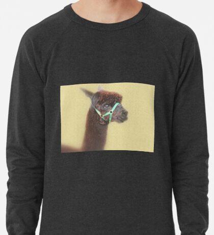 Alpaka - Braun - Leichtes Sweatshirt