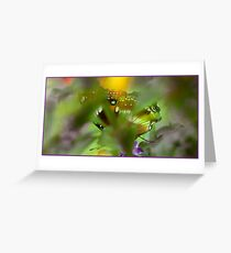 Butterfly hiding Greeting Card
