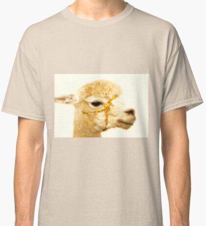 Porträt eines Alpakas Classic T-Shirt