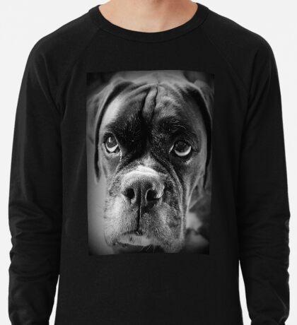 Oh bitte ... Lassen Sie es Regen Cookies ~ Boxer Dogs Series ~ Leichtes Sweatshirt