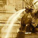 Fierce Fountain by Richard Pitman