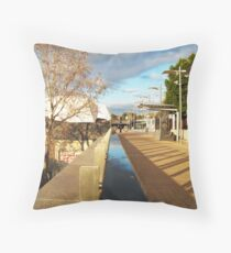 Divisions Throw Pillow