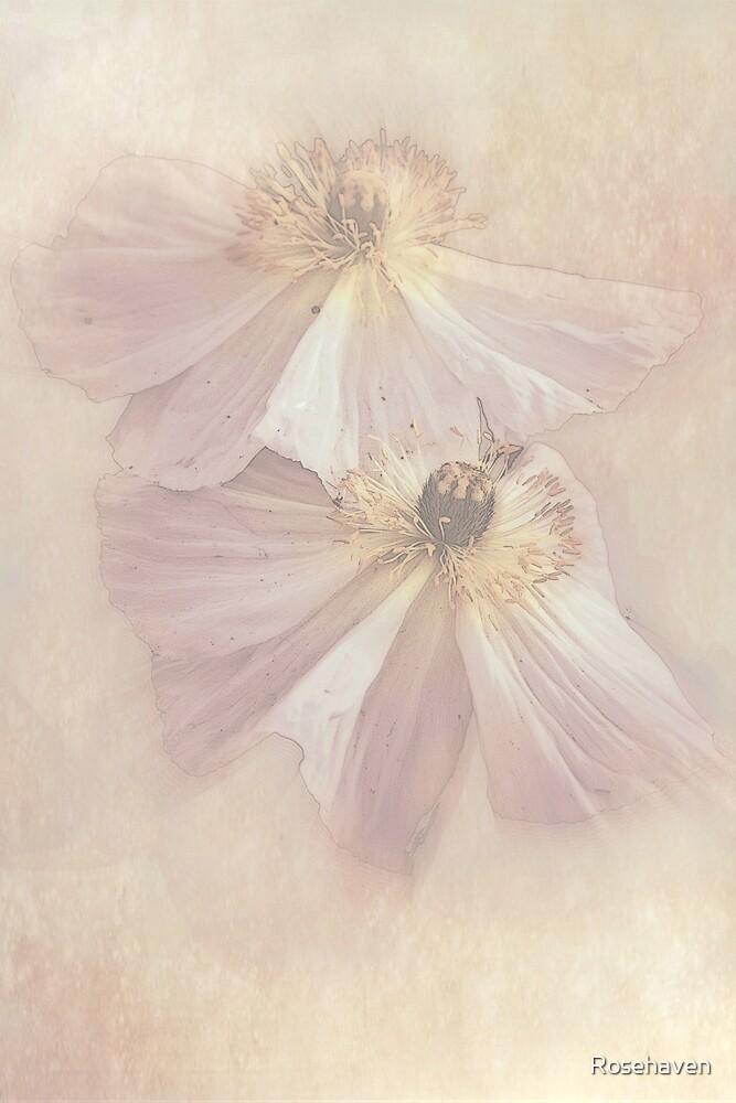 """Delicate & Precious............."" by Rosehaven"