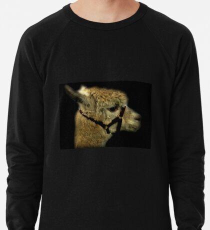 Profil - Alpaka Leichtes Sweatshirt