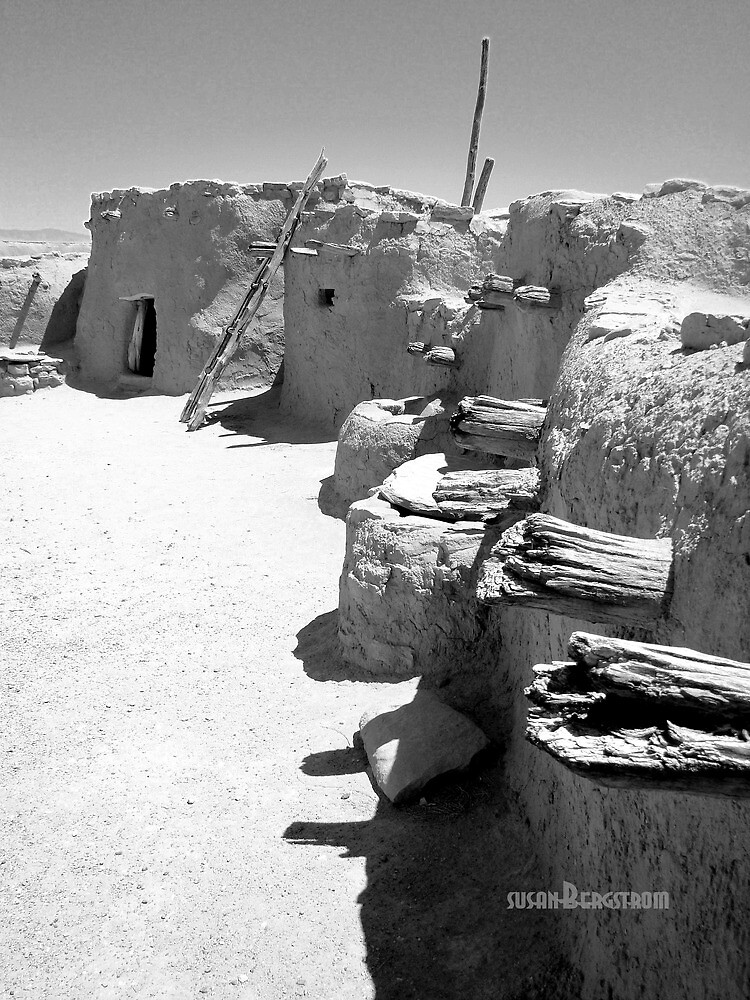 """Ancient Homes Of The Desert"" by Susan Bergstrom 