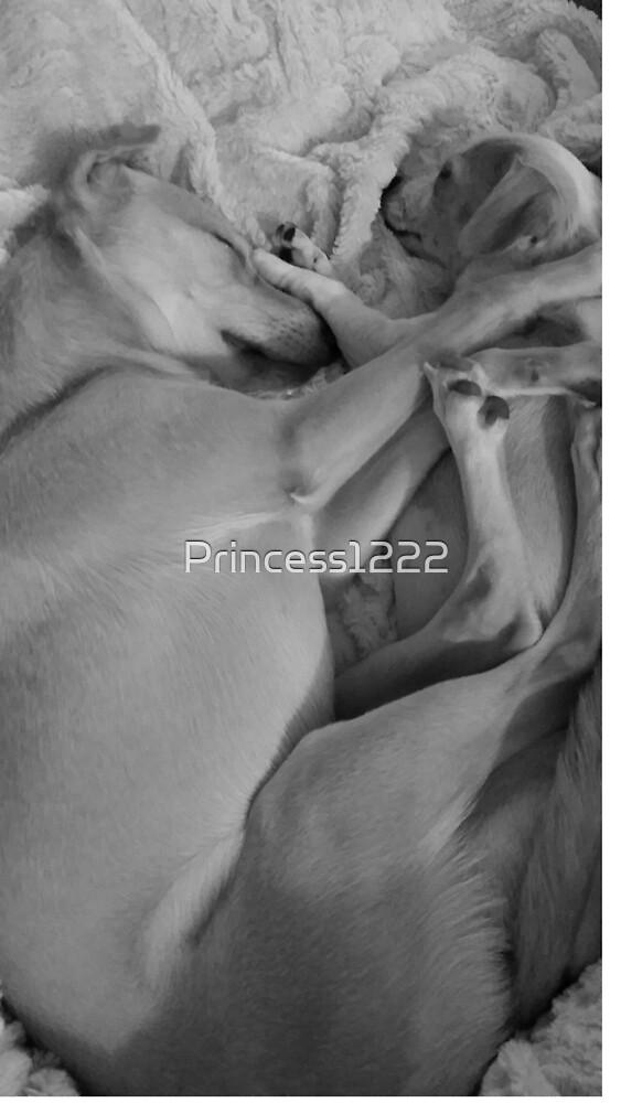 Puppy Love by Princess1222