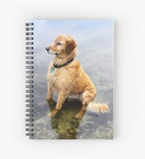 Wet Dog ~ Cooling Off At the Lake Spiral Notebook