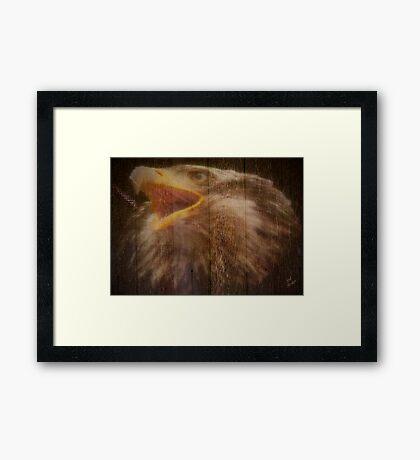 Eagle Fence Framed Print
