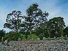 Temple Wood Stone Circle by WatscapePhoto