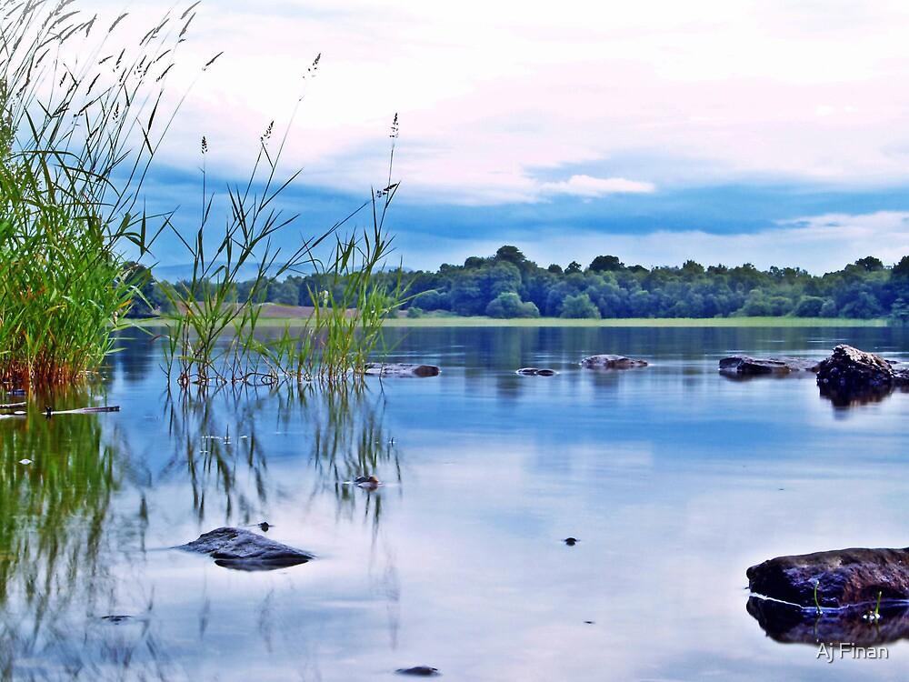 Reflections On Lake Menteith, Scotland.  by Aj Finan