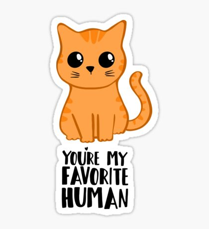 You're my favorite human - Ginger Cat - Shirt from the cat MOM - American Spelling Sticker