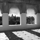 Alhambra Palace by laurentlesax