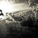 Tropical Storm Ida by Joe McTamney