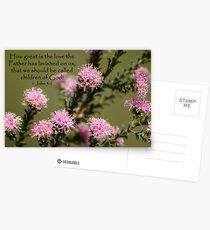 1 John 3:1 Postcards