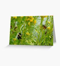 Bumble Bee Watching Bug Love Greeting Card