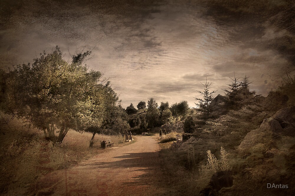 Memories Fade - Classic by Danuta Antas