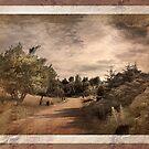 Memories Fade - Vintage by DAntas