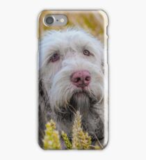 Spinone - Awaiting Command iPhone Case/Skin