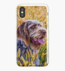 Spinone - Rone colouring iPhone Case/Skin