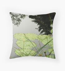 Bullhead-lilies ~ Sturbridge, Massachusetts Throw Pillow