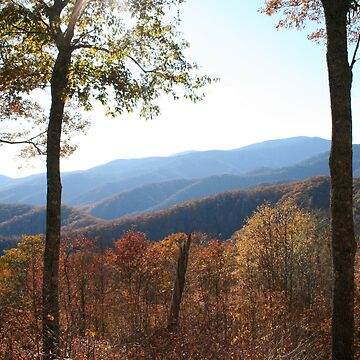 The Great Smokey Mountains in Fall  by Misawalk