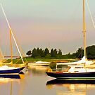 West Falmouth Harbor by Michael  Petrizzo