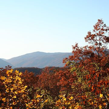 Breathtaking View of the Smoky Mountains by Misawalk