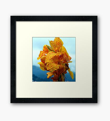 What on earth is it taken in Madria  Framed Print