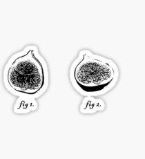 fig 1. fig 2. Sticker