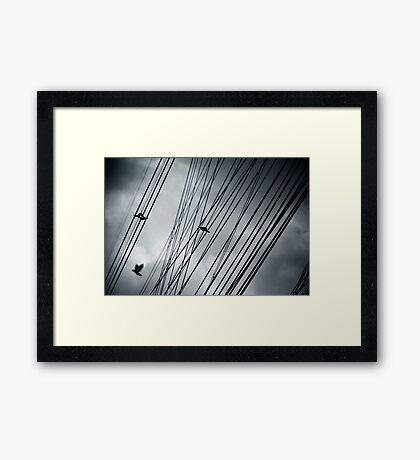 Sky cables Framed Print