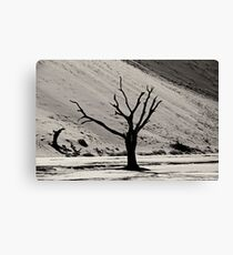 Dead Vlei with dead trees in desert landscape of Namib BW 03 Canvas Print