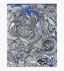 Black & Blue Mirror Photographic Print