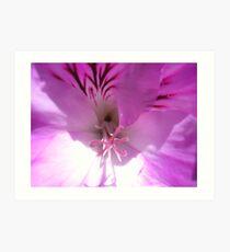 Pink Pelagonium Art Print
