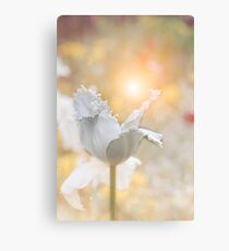Romantic Tulip - Dance of the Tulip Fairy Canvas Print