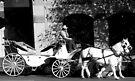 Buggy Ride by Rinaldo Di Battista