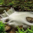 Mountain Stream Waterfall by Bo Insogna