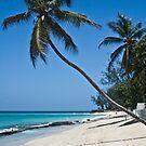 Worthing Beach, Barbados. by Brian Tarr