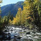 Cascade Creek by Sun Dog Montana