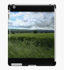 Green Field and Grey Sky - HDR iPad Case/Skin