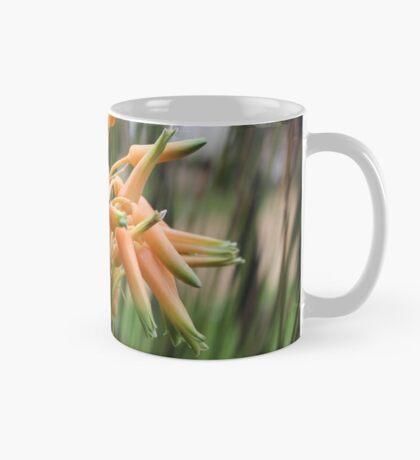 Aloe cooperi - flower Mug