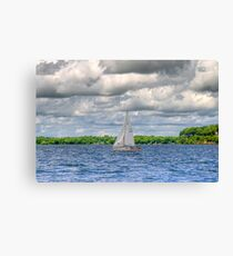 Carried by the Wind   Canvas Print