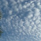 Wall of Clouds by wildfiremare