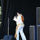 Too Much Elvis by John Beamish